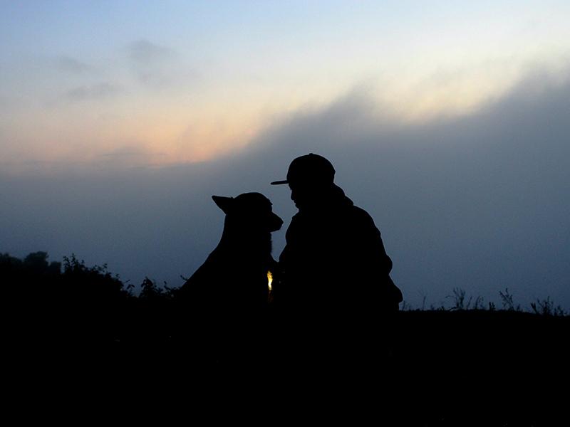 Cane e padrone insieme anche oltre la vita: la proposta dalla Liguria